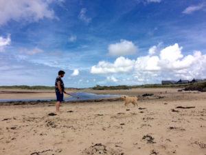 Dog beach 1